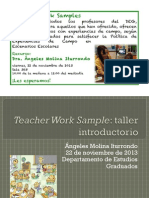 taller-teacher work samples