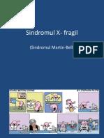 sd.X-fragil