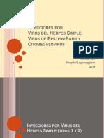 Infecciones HSV, EBV y CMV