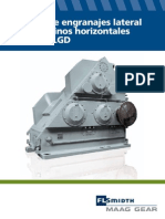 FLS_MAAG_Broschuere_LGD_spanish.pdf