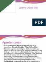 giardiasis (1)