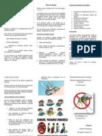 El Dengue Ysaileen