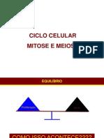 Ciclo Celular e Meiose