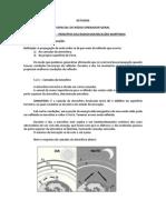 EROG - 1.2 - NOÇÕES DE PROPAGAÇÃO.docx