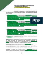 Formato de Minuta SRL bienes.docx