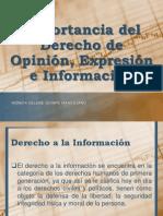 Importancia del Derecho de Opinión, Expresión e Información