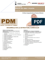 Dv10 Metalurgia Extractiva Aplicada a Minerales de Oro y Plata-1
