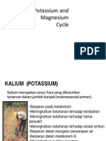Potassium, Calcium and Magnesium -Cycle
