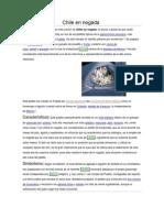 Chile en nogada.docx
