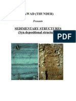 33735339 Sedimenatary Structures Syn Depositional