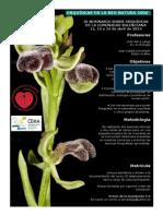 CEMA Font Roja. Alcoy. Orquídeas en la Red Natura 2000. Abril 2014. Obra Social. Caja Mediterráneo