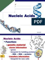 Nucleic Acids Form Six