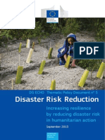DRR Thematic Policy Doc