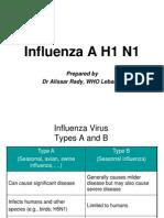 UN Swine Flu Presentation