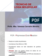 AULA 11- Técnicas de BioMol  - PCR