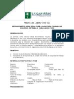 Practica de Laboratorio No 1 Quimica Pi09