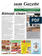 Platinum Gazette 04 April 2014
