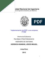 Informe ERP (Recuperado)