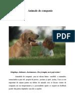 Animale de Companie- Articol21