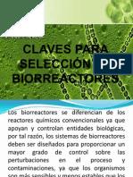 CLAVES PARA SELECCIÓN DE BIORREACTORES (Expocición).pptx