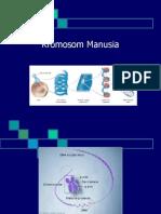 kuliah kromosom