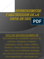 CICLOS BIOGEOQUIMICOS[1]