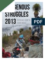 Indigenous Struggles 2013