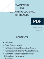 Framework on cultural differences
