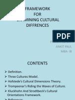 Framework on cultural differences