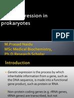Gene Expression in Prokaryotes.