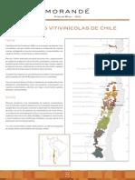 Morande_RegVit_Esp.pdf