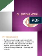 El  sistema visual.pptx