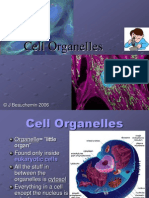 cell organelles-1