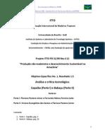1.5 Análise e crítica tecnológica - copaíba e babaçu