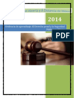 Derecho penal y la seguridad Pública