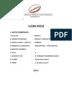 Trabajo_Lesiones_D.P..docx