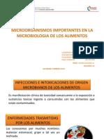 Diapositivas de Microbiologia