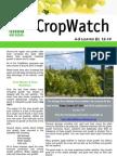 Adelaide Hills Crop Watch 231009