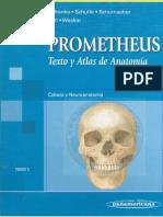 Prometheus. Cabeza y Cuello