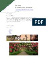 Agricultura Artesanias Comercio