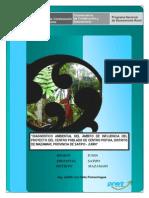 Diagnostico Ambiental - Centro Piotoa 00