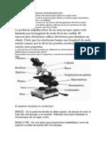 Micro Exp Cuestionario Microscopio