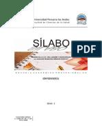 Silabo Enf