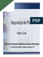 seguranadepoo-heitorlima-101004125333-phpapp01