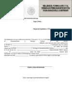 Formato de Registro 99