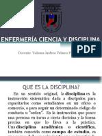 Ciencia y Disciplina en Enfermería