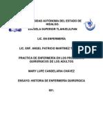 Ensayo Historia Enf. Quirurgica