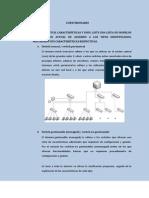TIPOS DE SWITCH.pdf