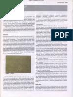 Bab 413 Leptospirosis