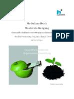 Modulhandbuch Master Gesundheitsfördernde Organisationsentwicklung HS Magdeburg